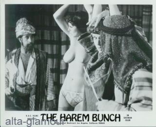 THE HAREM BUNCH -- FILM STILLS